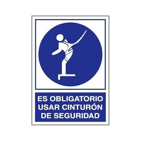 Placa De Obligacion 0-407